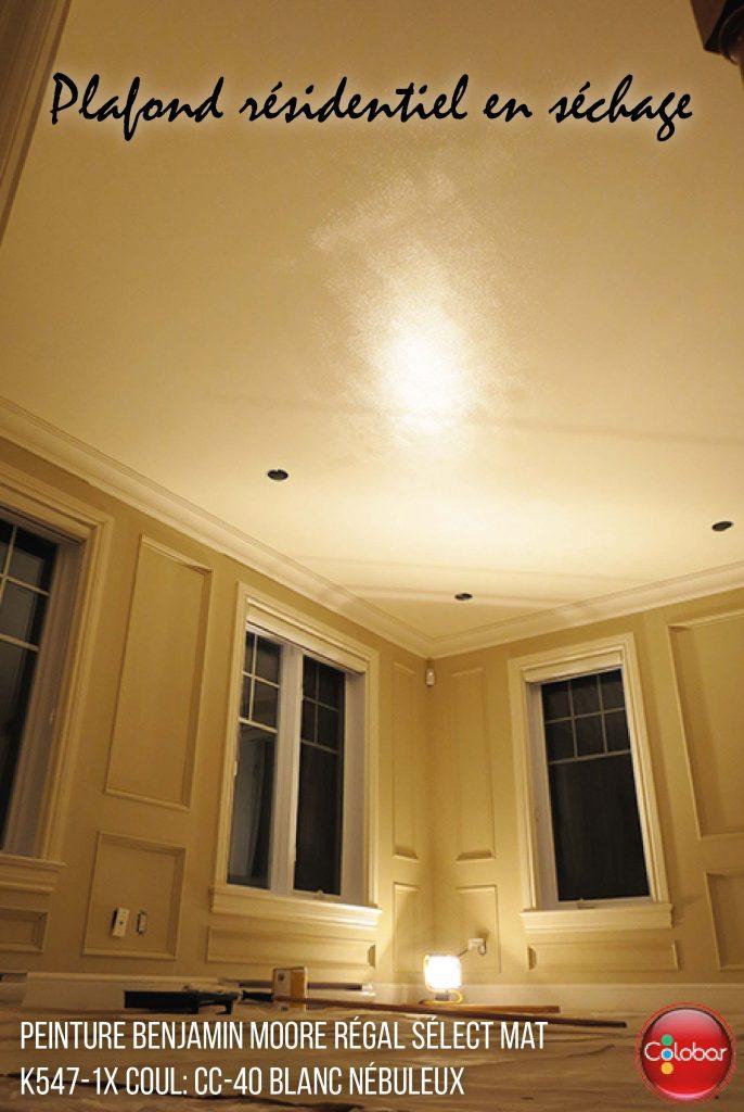 Trucs Pour Peinturer Un Plafond Sans Coups De Rouleau Colobar - Truc pour peinturer un plafond
